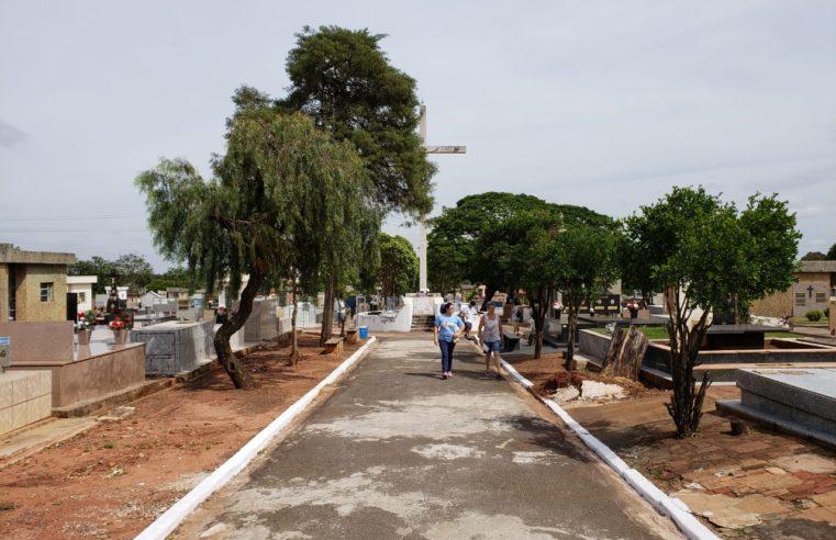 Para combater escorpiões, Prefeitura limpa cemitério municipal e apela por colaboração