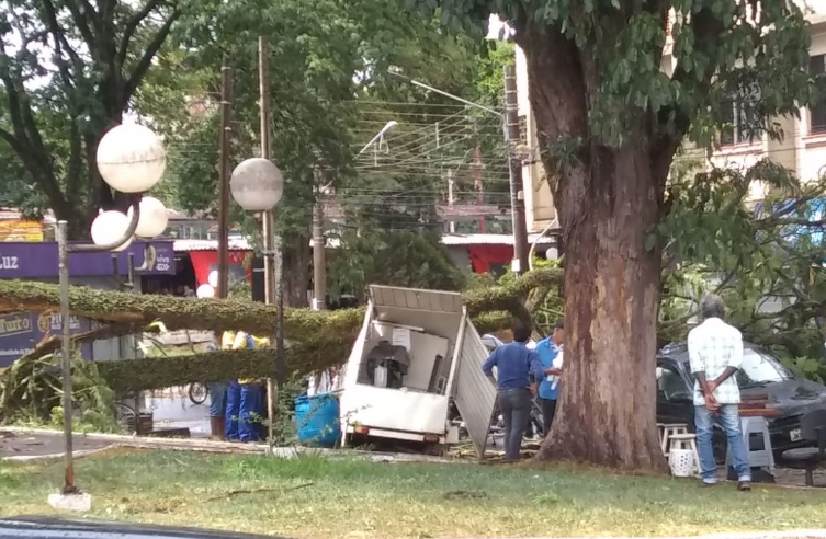 Parque Buracão recebe operação limpeza para retirada de galhos e árvores caídas durante ventania de terça-feira