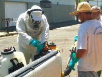 Assis registra casos de Dengue neste ano e Prefeitura pede colaboração da população